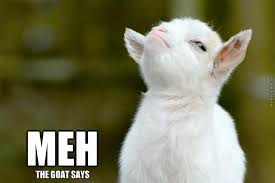 Meh Meme - the goat says meh by emmetea meme center