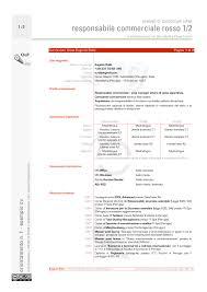 curriculum vitae pdf download da compilare un esempi di curriculum vitae occhioepenna servizi per comunicare