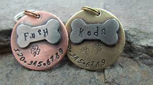 Engravable Dog Tags For Men Pet Id Tag Pet Tag Dog Id Tag Collar Tag With A Nickel