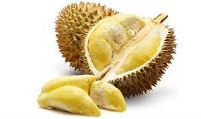 buy fruit online buy durian order durian online jiro s garden
