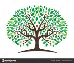 family tree logo design template stock vector elaelo 134814388