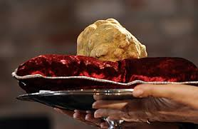 italian white truffle white truffles why they re such an expensive delicacy time