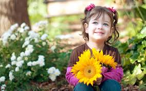 child with sunflowers images free stock photos desktop