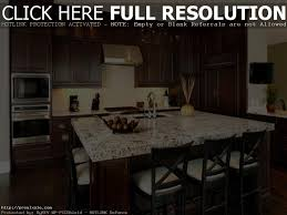 Dark Cabinet Kitchen Designs by Dark Cabinet Kitchen Designs Best Kitchen Designs