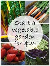 101 gardening secrets the experts never tell you vegetable