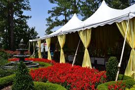 tent rentals raleigh nc birthday party ideas birthday party ideas raleigh nc