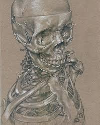 Halloween Skeleton Art Happy Halloween Strathmore Artist Papers