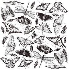 pattern designs by gavin rutherford