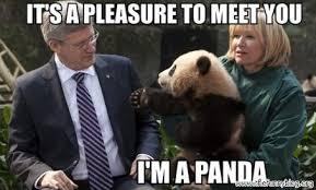 Panda Meme - hello i am panda by sam lim on deviantart