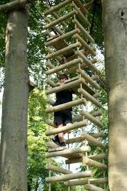 1446 best tree houses images on pinterest treehouses tiny