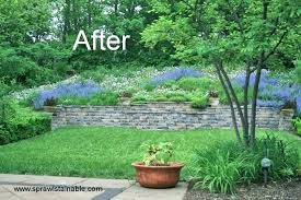 Backyard Slope Landscaping Ideas Landscaping Ideas For Small Womentrendshoes Club