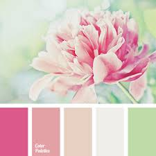 perfect colors for decoration of a wedding during the warm season