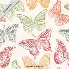 colors ornamental butterflies pattern vector free