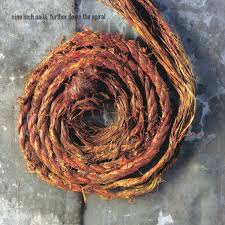 nine inch nails further down the spiral amazon com music