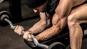 30 days to your best arms bodybuilding com