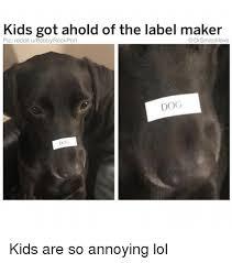 amazon black friday reddit 25 best memes about reddit reddit memes