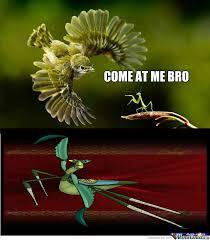 Mantis Meme - rmx kung fu mantis by recyclebin meme center