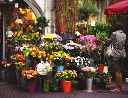 flowers shop flower shop by blurry photography on deviantart