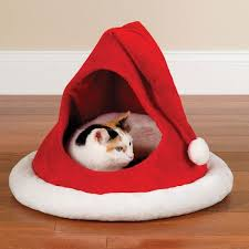 12 totally awesome cat beds wide open pets