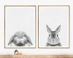 rabbit prints rabbit print baby animal prints woodland nursery decor