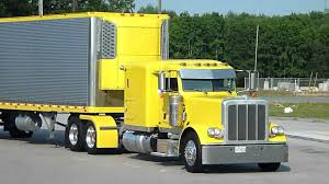 peterbilt trucks yellow peterbilt and reefer thermo king yellow show of truck and