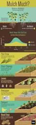 Garden Mulch Types - mulch much the benefits of gardening with mulch fix com