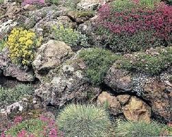 Lava Rock Garden Lava Rock Garden Landscape Rock Retaining Wall Blocks Landscape