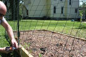 ways to keep animals out of your garden build a simple fence 1