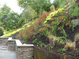 Landscaping Ideas Hillside Backyard We Could Forget The Wall And Just Landscape The Slope Looking