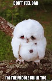 Middle Child Meme - don t feel bad i m the middle child too sad owl make a meme