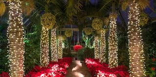 Chicago Botanic Garden Events 5 Ways To Relax During The Holidays Make It Better Family
