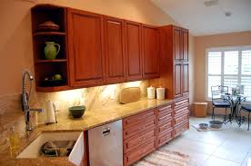 Kitchen Cabinets Tampa Fl by Custom Kitchen Cabinets Tampa Florida Kitchen Design