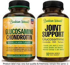 best joint supplement the back pain shop glucosamine chondroitin msm boswellia quercetin
