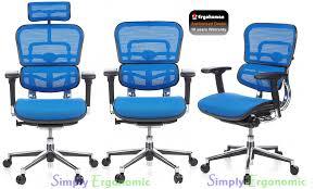 ergonomically correct desk chair ergohuman blue mesh office chair ergohuman mesh office chairs
