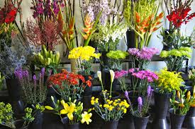 whole sale flowers wholesale flowers in buckets budget friendly beauty