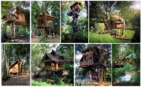 Tree Houses Around The World The Most Incredible Tree House Hotel And Eco Tourism Tree Resorts