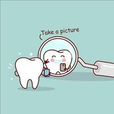 Dental Hygienist Business Cards Best 25 Dentistry Ideas On Pinterest Dental Hygiene Dental And