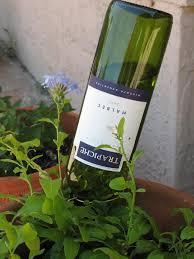 diy self watering planter wine bottle living room ideas