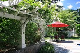 Fragrant Climbing Plant - climbing plants for the garden 65 ideas on how to make your site