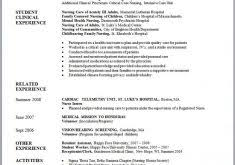 Resume Templates For Government Jobs by Government Resume Template Haadyaooverbayresort Com