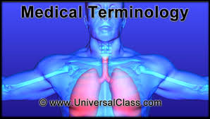 Human Anatomy And Physiology Terminology Online Course Medical Terminology 101 The Language Of Medicine