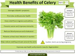 15 incredible celery benefits u0026 nutrition facts