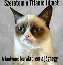 Cool Cat Meme - grumpy cat magyar saj磧t m礬mek tap the link now to see all of our