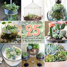 25 ideas for tabletop gardens and terrariums pretty handy
