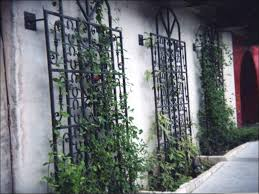 Ideas For Metal Garden Trellis Design Wall Trellis Ideas Amazing Metal Garden Trellises 1 Garden Wall