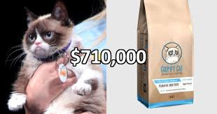 Angry Cat Good Meme - grumpy cat wins 710 000 in copyright infringement lawsuit