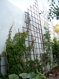 articles with metal trellis wall top tag metal wall trellis
