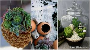 small indoor garden ideas garden ideas flower garden ideas indoor garden supply rock