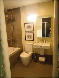 Small Bathroom Remodels On A Budget Bathroom Design Fabulous Cute Bathroom Ideas For Apartments