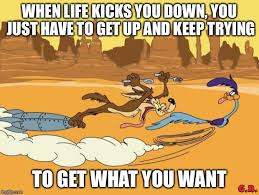 Wile E Coyote Meme - wile e coyote and roadrunner memes imgflip